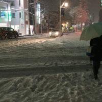 雪 差別化