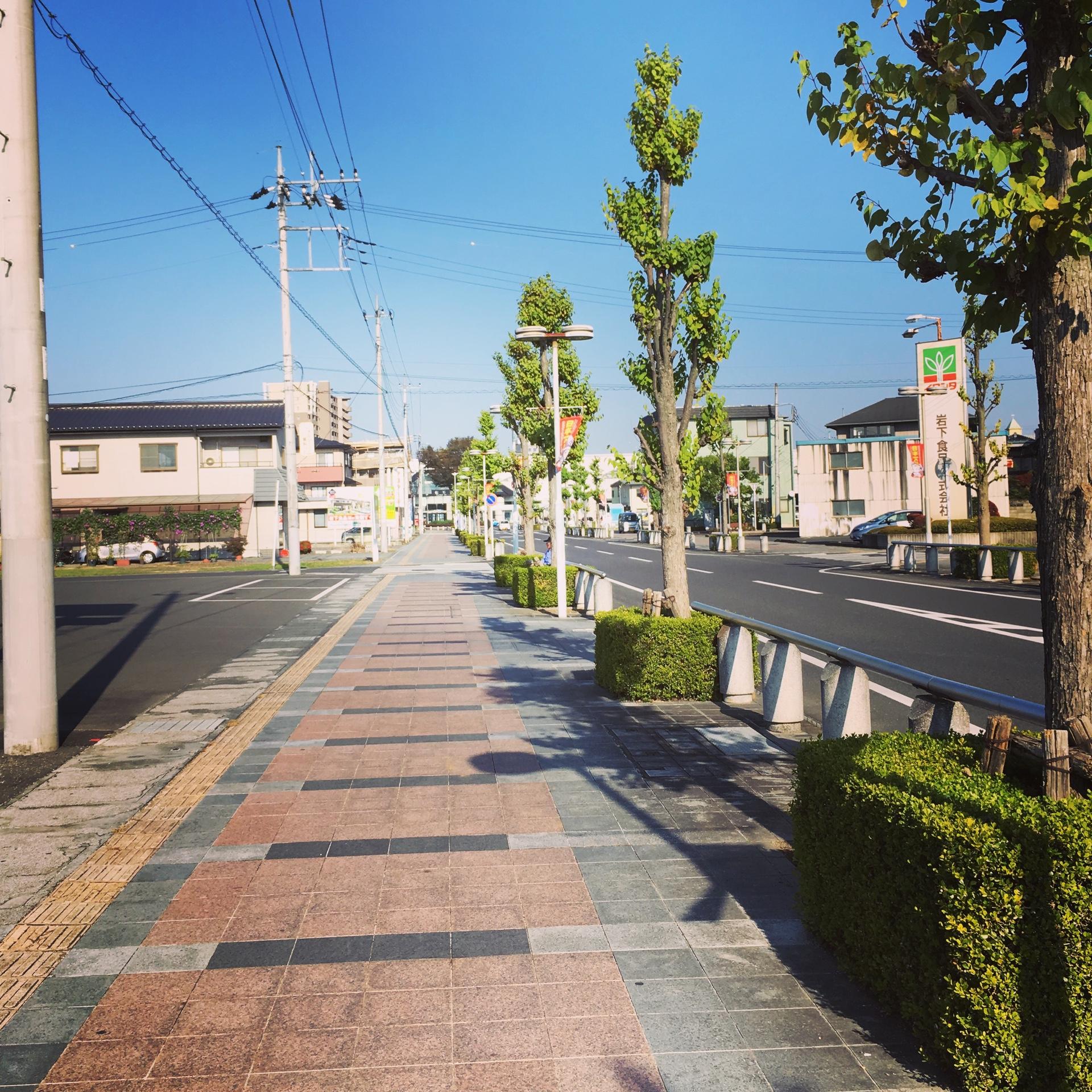 栃木 訪問